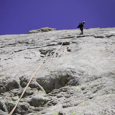 Alp cavales vn