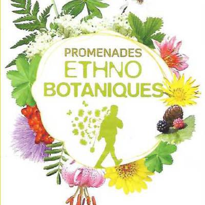 2020 logo plantes